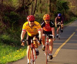 ded_cyclists_on_wod